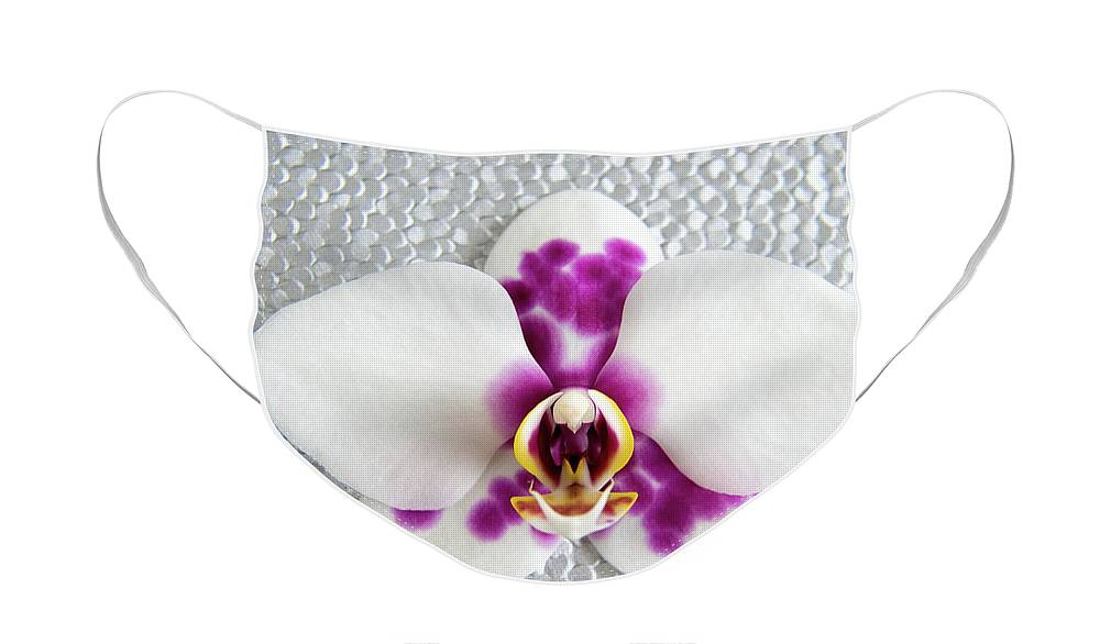 Nature Face Mask featuring the photograph Phalaenopsis Yu Pin Panda by Julia Hiebaum