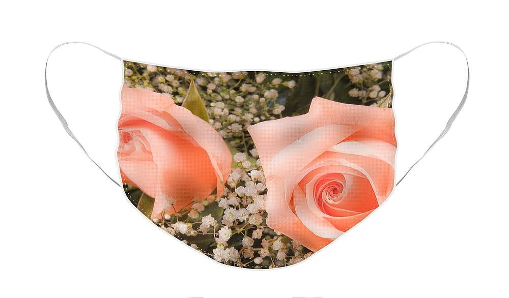 Roses Face Mask featuring the photograph Pink Roses Fine Art Photography Print by James BO Insogna
