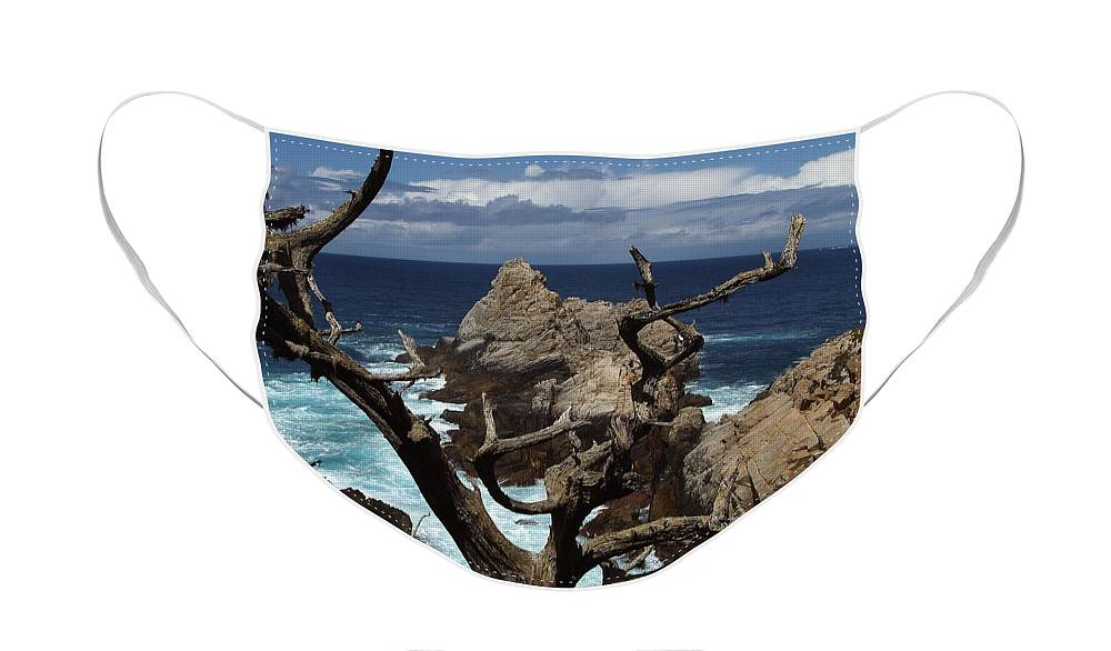 Carmel Face Mask featuring the photograph Point Lobos Rocks and Branches by Charlene Mitchell