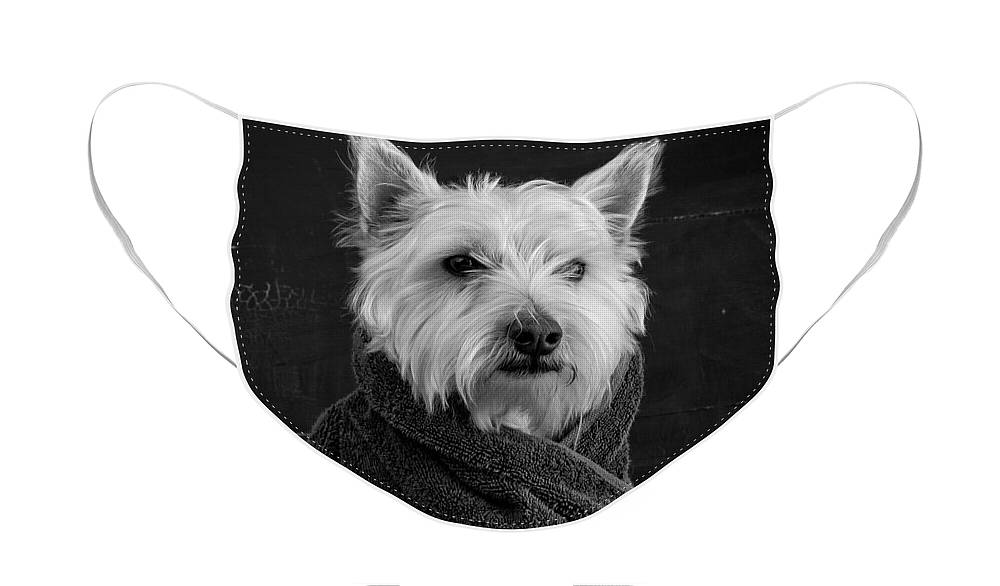 Portrait Of A Westie Dog Face Mask featuring the photograph Portrait of a Westie Dog by Edward Fielding