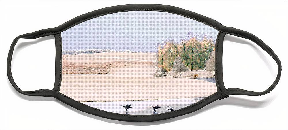 Landscape Face Mask featuring the photograph Powell Gardens in Winter by Steve Karol