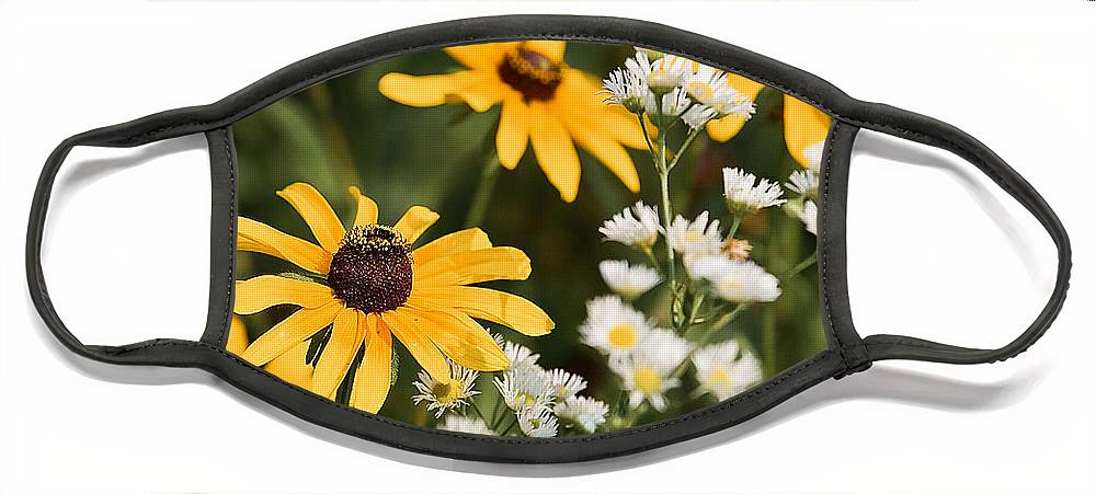Daisy Face Mask featuring the photograph Prairie Sceen by Mark Braun