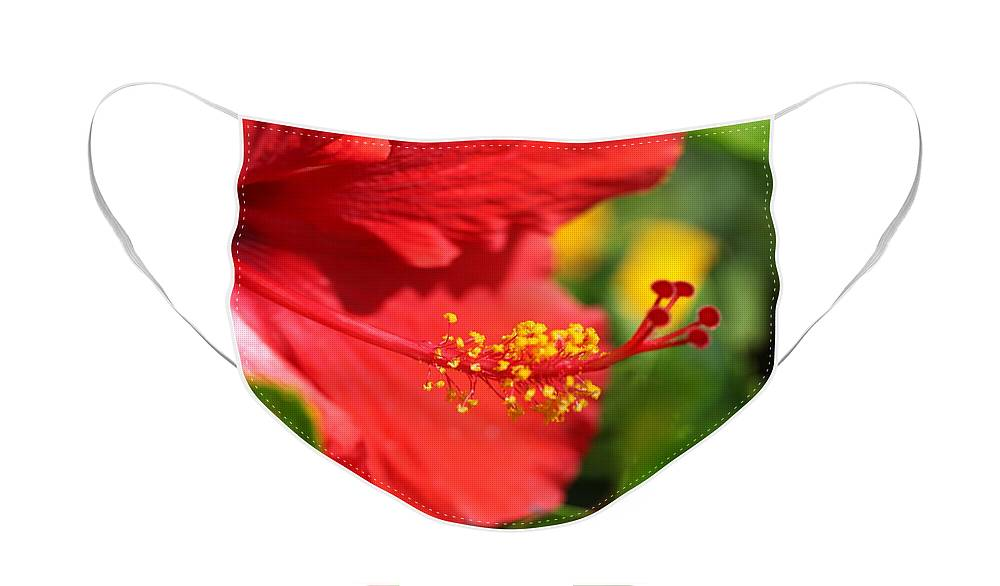Flowers Face Mask featuring the photograph Red Hibiscus and Green by Nadine Rippelmeyer
