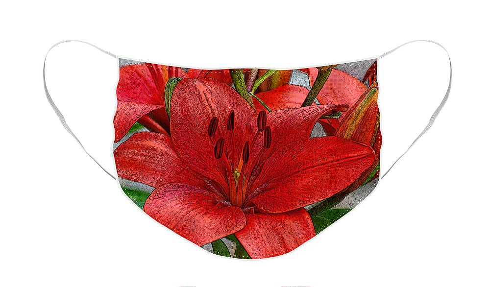 Diane Berry Face Mask featuring the photograph Red Lily by Diane E Berry