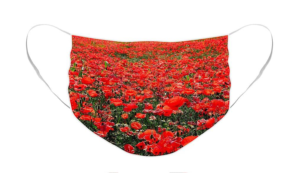 Flower Face Mask featuring the photograph Red Poppies by Juergen Weiss