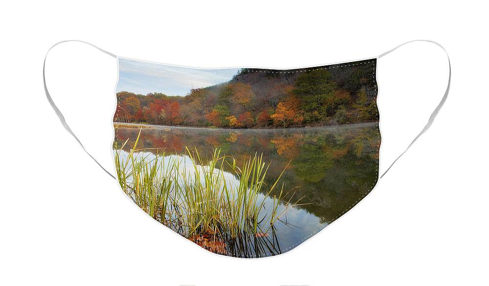 Landscape Face Mask featuring the photograph Reflection in the Fort River by Iris Greenwell