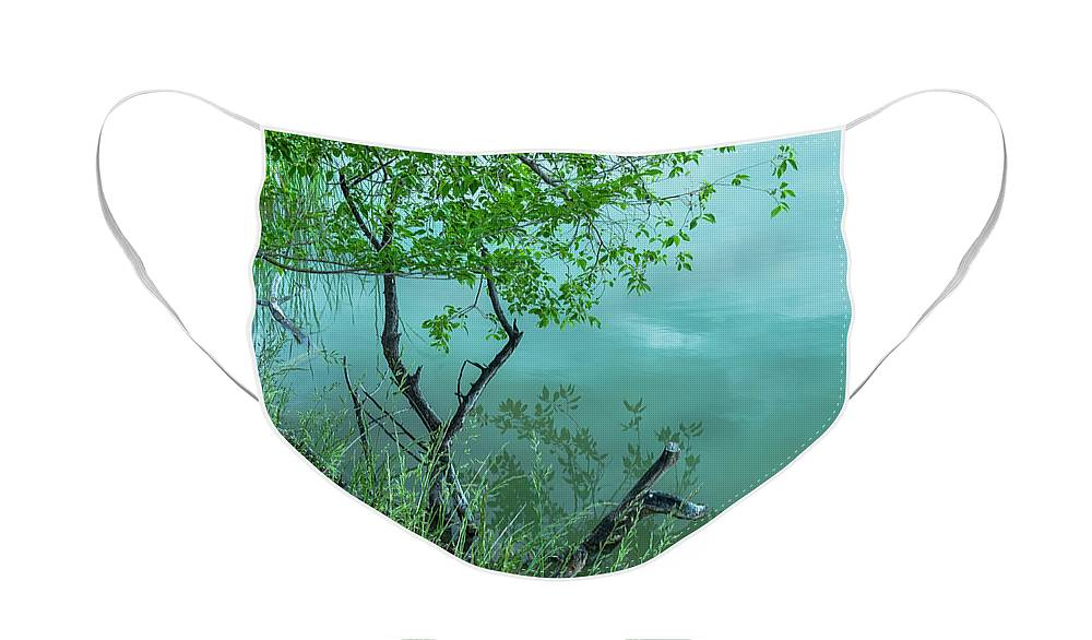 Trees Face Mask featuring the photograph Reflections, Texture and Water by James BO Insogna