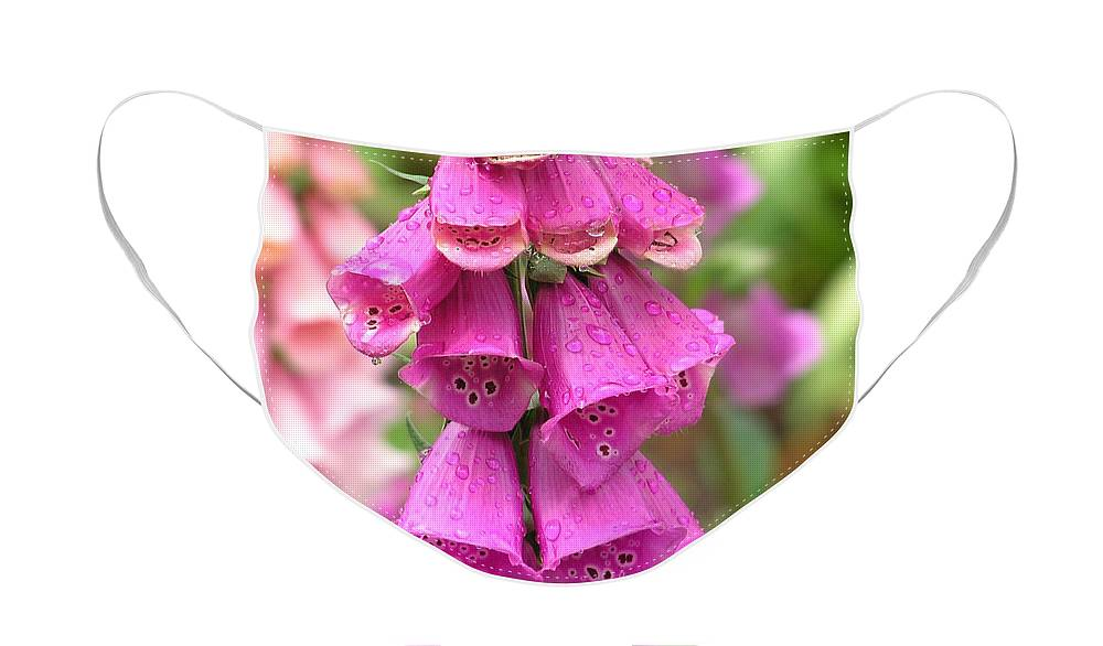 Fox Glove Face Mask featuring the photograph Ringing Bells by Louise Magno