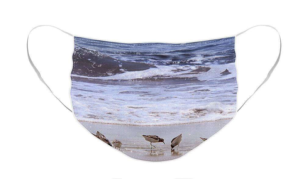 Beach Face Mask featuring the photograph Sand Dancers by Steven Sparks