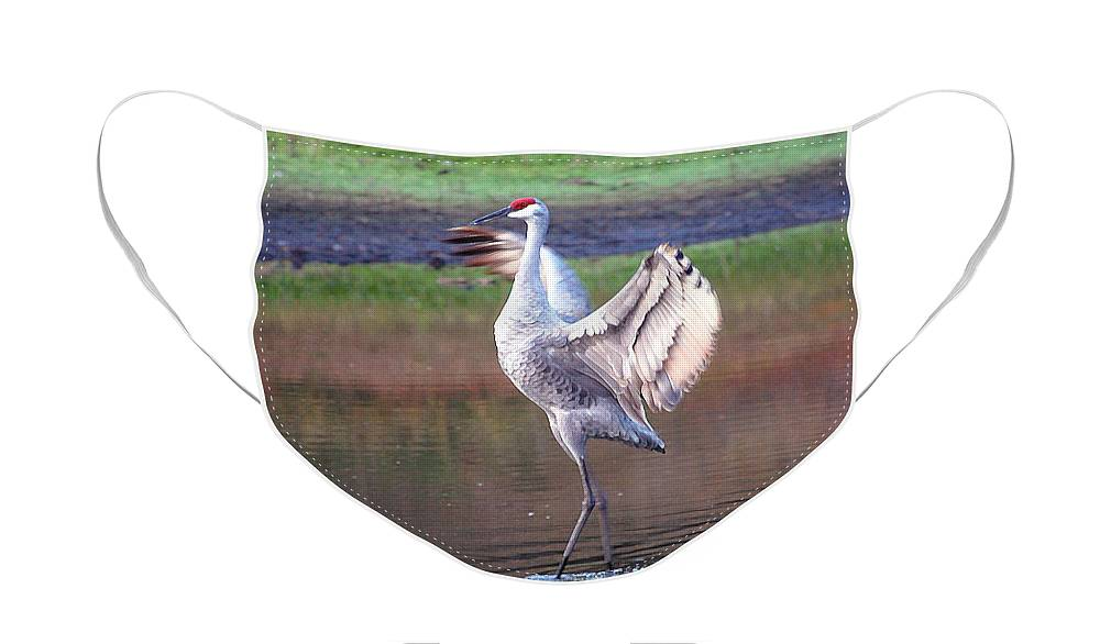 Sandhill Face Mask featuring the digital art Sandhill Crane Painted by Robert Meanor