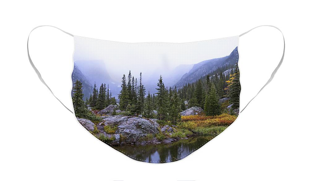 Saturated Forest Face Mask featuring the photograph Saturated Forest by Chad Dutson