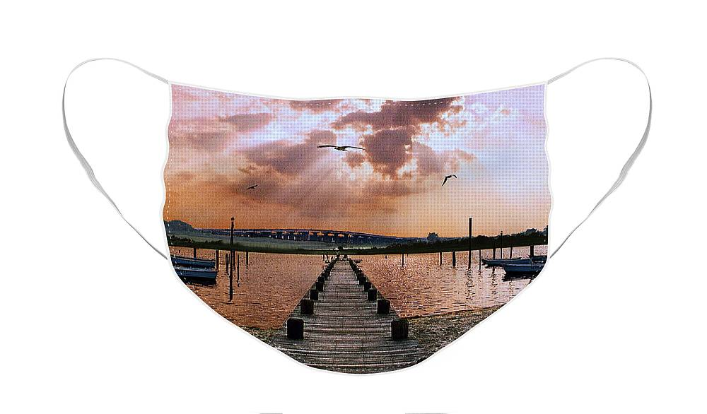 Seascape Face Mask featuring the photograph Seaside by Steve Karol