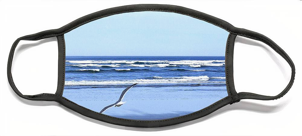Seagull Face Mask featuring the photograph Shadow On The Sand by Will Borden