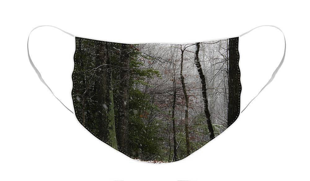 Snow Face Mask featuring the photograph Snowy Trail Quantico National Cemetery by Teresa Mucha