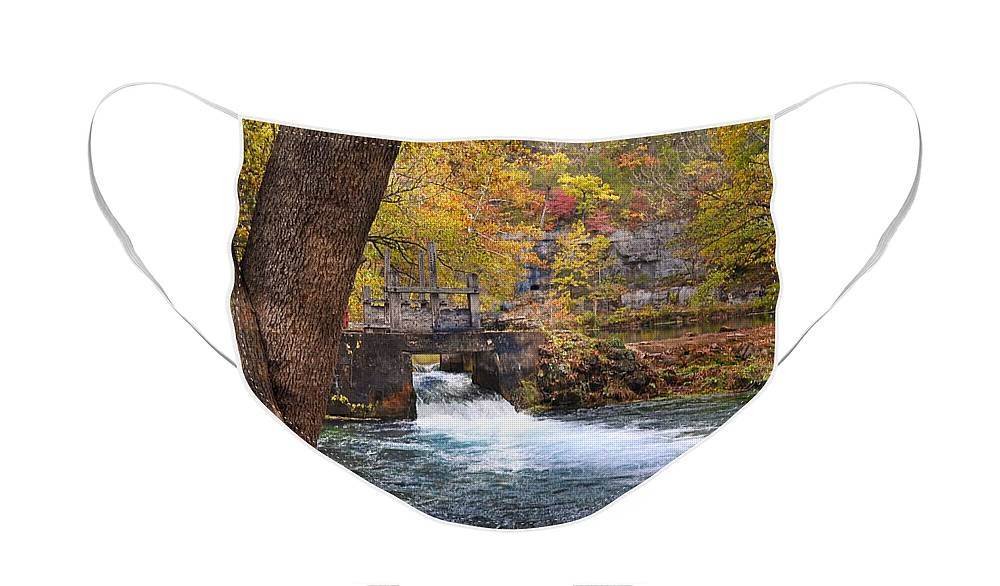 Spring Face Mask featuring the photograph Spring Flow by Marty Koch