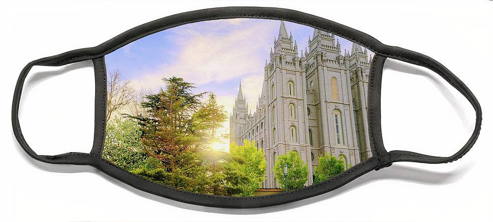 Salt Lake Face Mask featuring the photograph Spring Rest by Chad Dutson