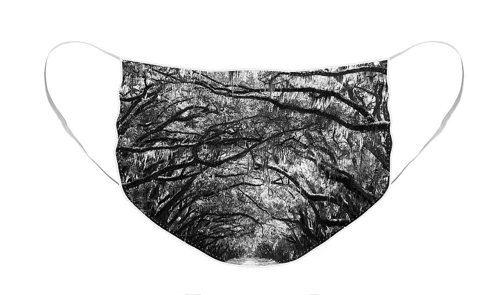Live Oaks Face Mask featuring the photograph Sunny Southern Day - Black and White by Carol Groenen
