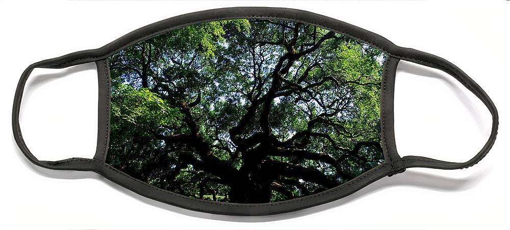 Angel Oak Face Mask featuring the photograph The Angel Oak in Summer by Susanne Van Hulst