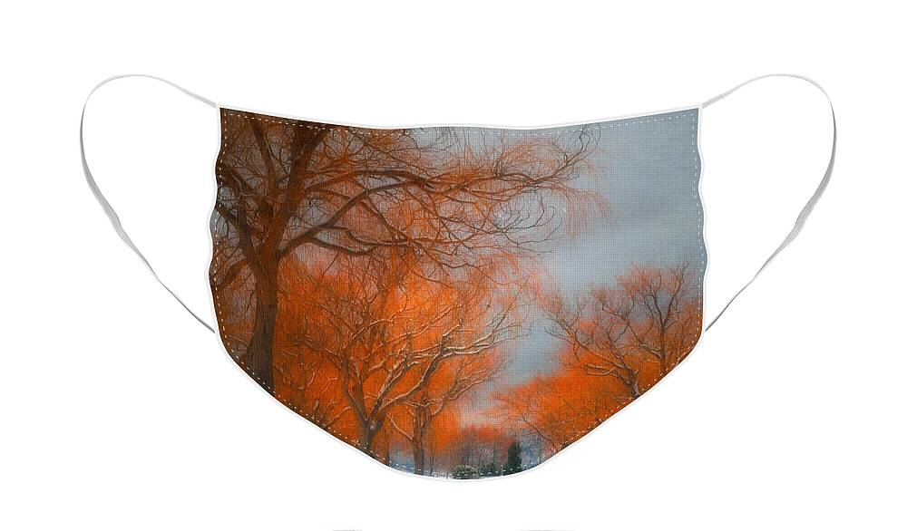 Summerland Face Mask featuring the photograph The Colours of Winter by Tara Turner