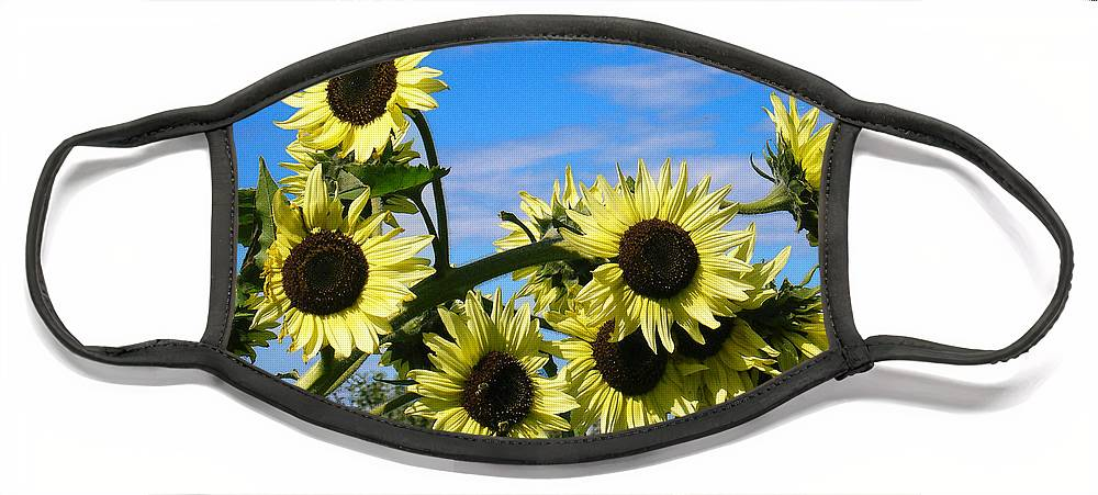 Flowers Face Mask featuring the photograph The Last of Summer by Steve Karol