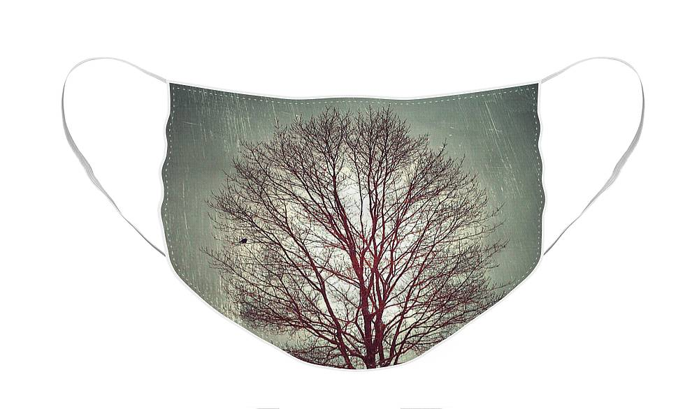 Tree Face Mask featuring the photograph The Light Within by Tara Turner
