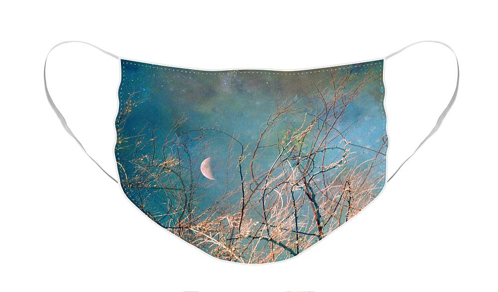 Moon Face Mask featuring the photograph The Messy House of the Moon by Tara Turner