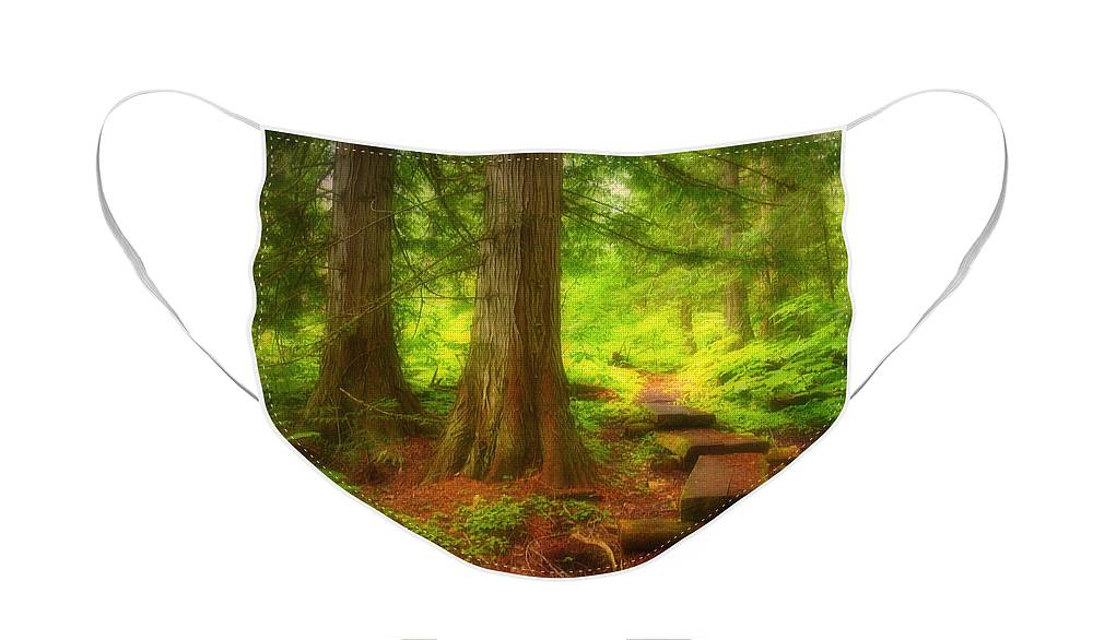 Forest Face Mask featuring the photograph The Path Through the Forest by Tara Turner