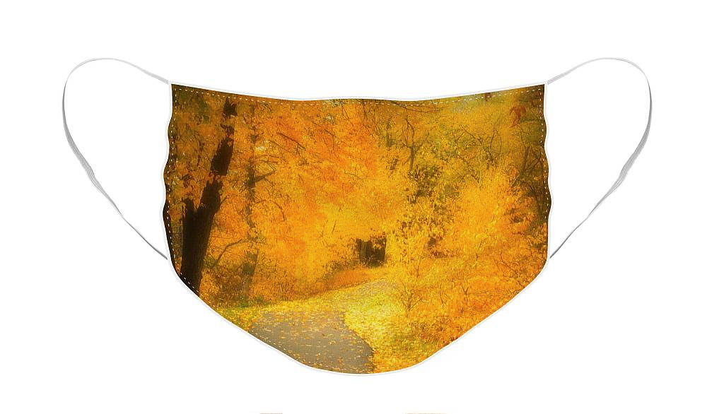 Autumn Face Mask featuring the photograph The Pathway of Fallen Leaves by Tara Turner