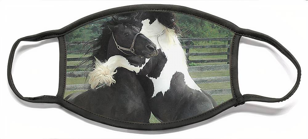 Horses Face Mask featuring the photograph The Posturing Game by Fran J Scott