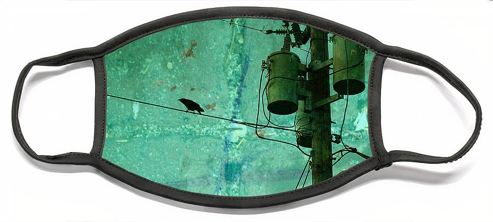 Urban Face Mask featuring the photograph The Urban Crow by Tara Turner