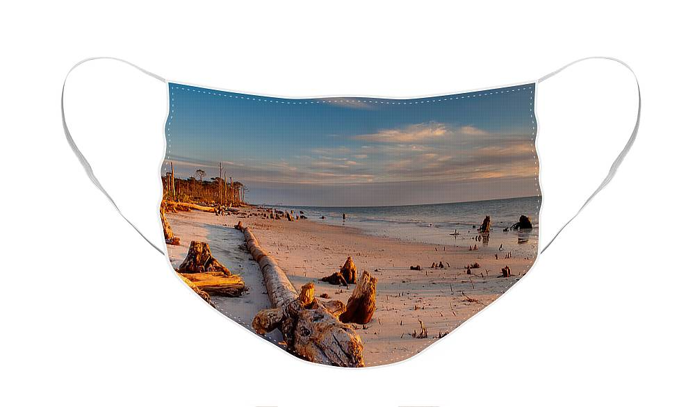 Driftwood Face Mask featuring the photograph Timeless Florida Beach by Rich Leighton