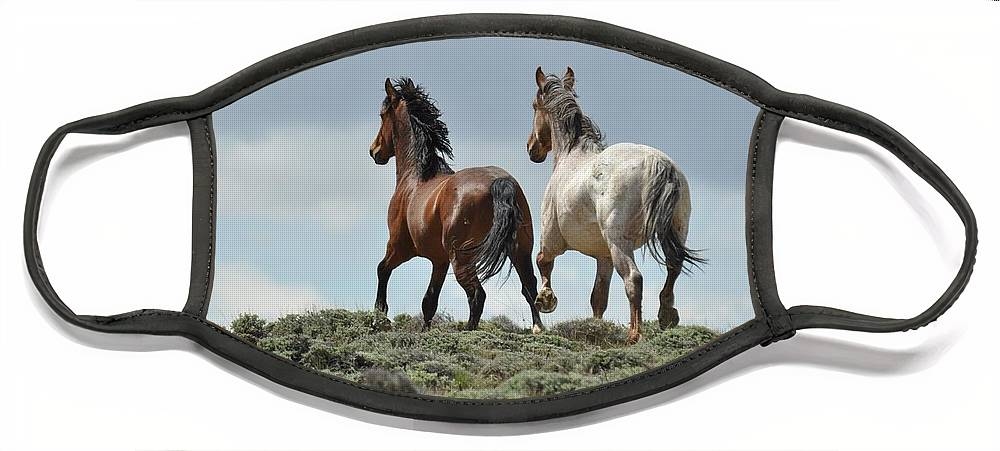 Wild Horses Face Mask featuring the photograph Too Beautiful by Frank Madia