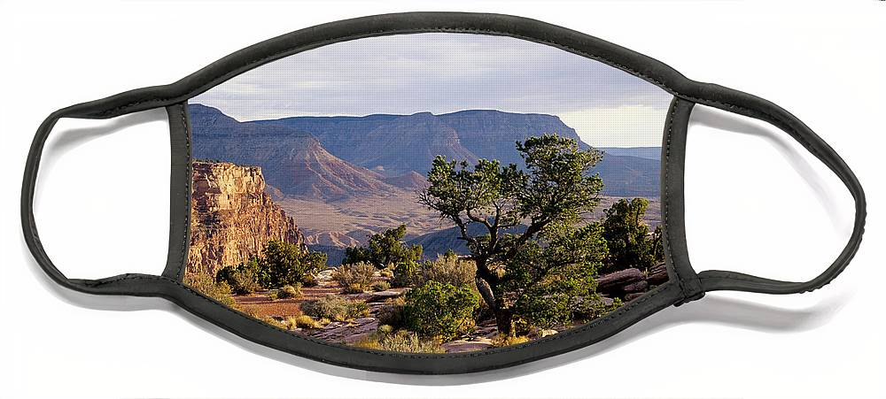 Arizona Face Mask featuring the photograph Toroweap by Kathy McClure