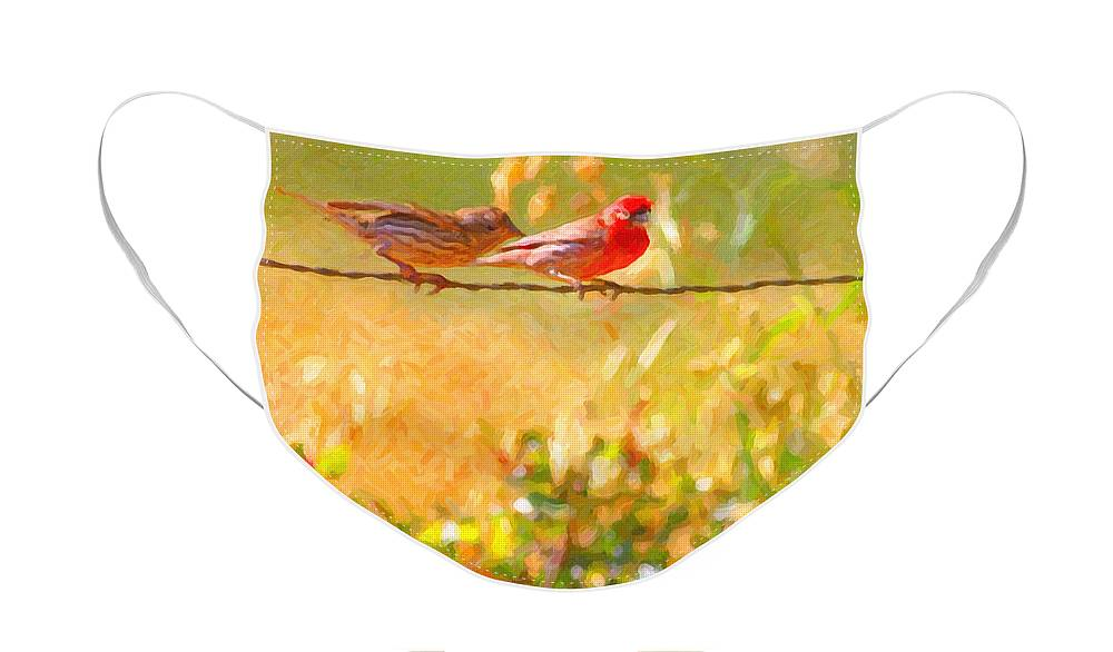 Bird Face Mask featuring the photograph Two Birds On A Wire by Wingsdomain Art and Photography