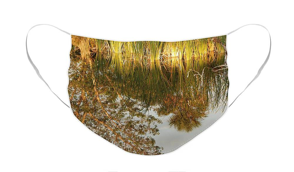 Wood Face Mask featuring the photograph Water Line by Rob Hans