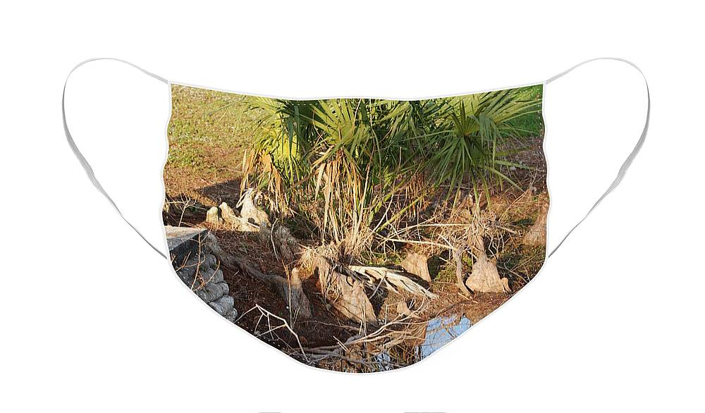 Roots Face Mask featuring the photograph Waters Edge by Rob Hans