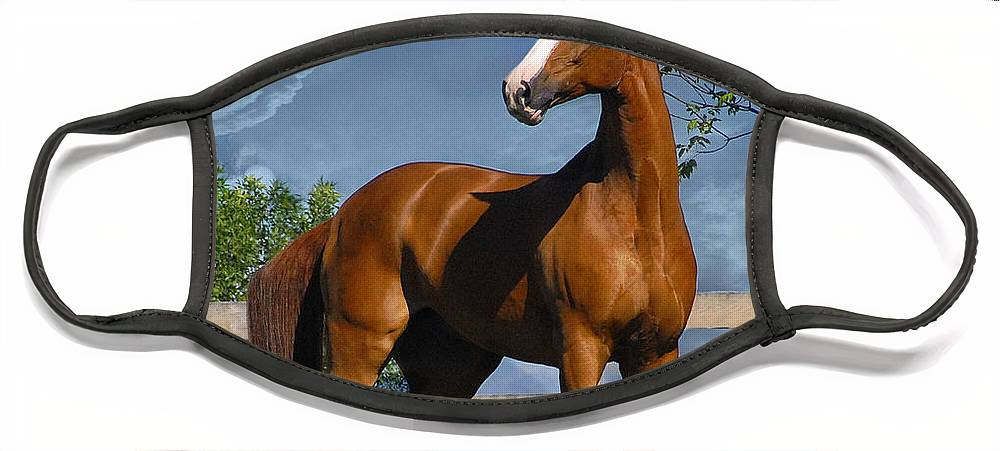 Horses Face Mask featuring the photograph Welt Adel by Fran J Scott