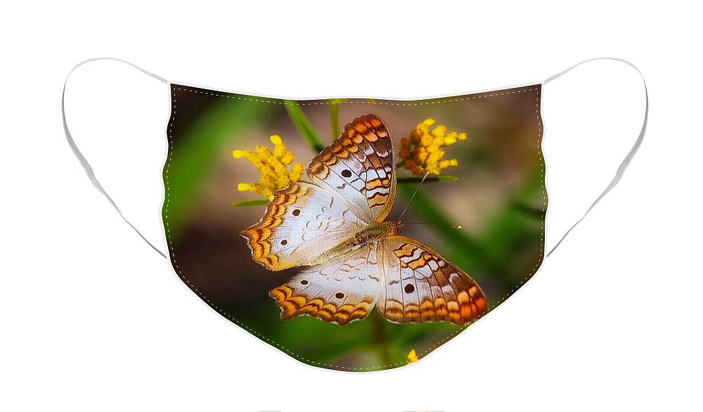Butterfly Face Mask featuring the photograph White Peacock Butterfly by Rich Leighton