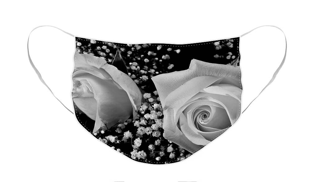 Flowers Face Mask featuring the photograph White Roses BW Fine Art Photography Print by James BO Insogna