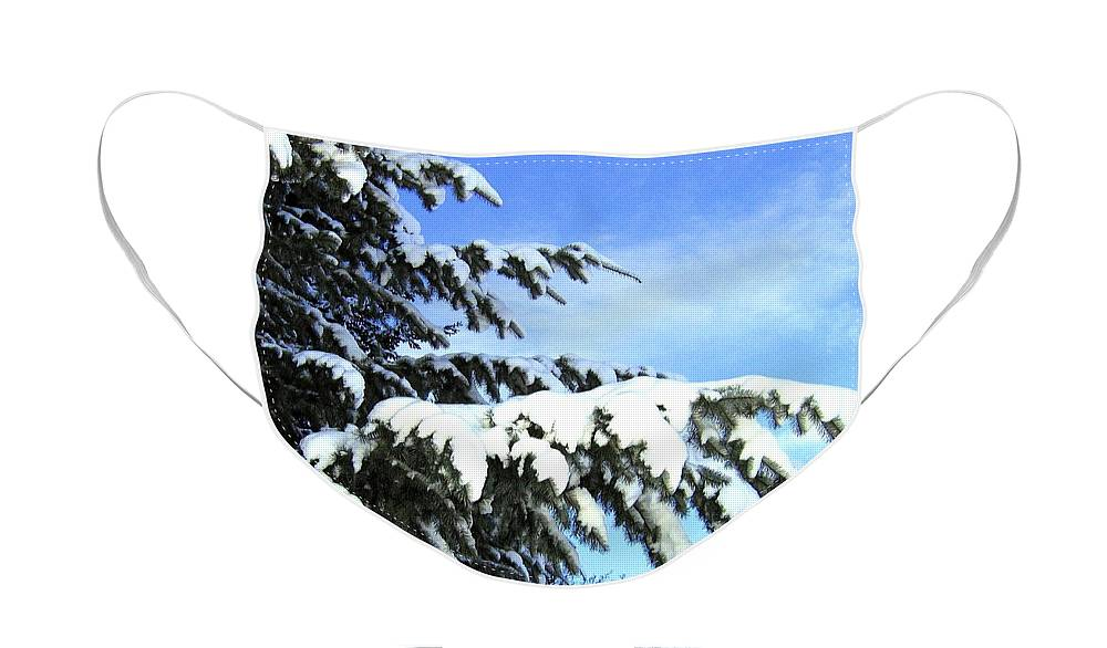 Winter Face Mask featuring the photograph Winter Boughs by Will Borden
