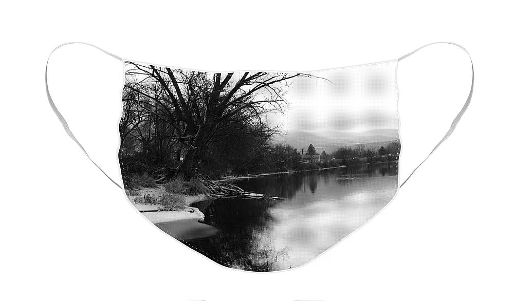 Black And White Face Mask featuring the photograph Winter Tree Reflection - Black and White by Carol Groenen