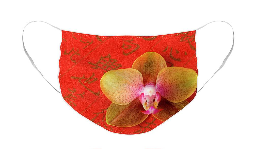 Orchid Face Mask featuring the photograph Wishes Come True by Julia Hiebaum