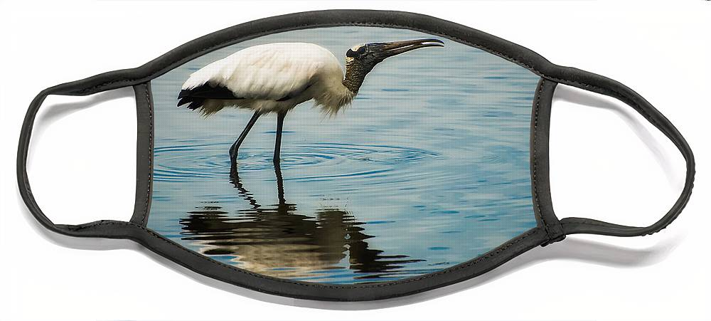 Stork Face Mask featuring the photograph Wood Stork by Rich Leighton