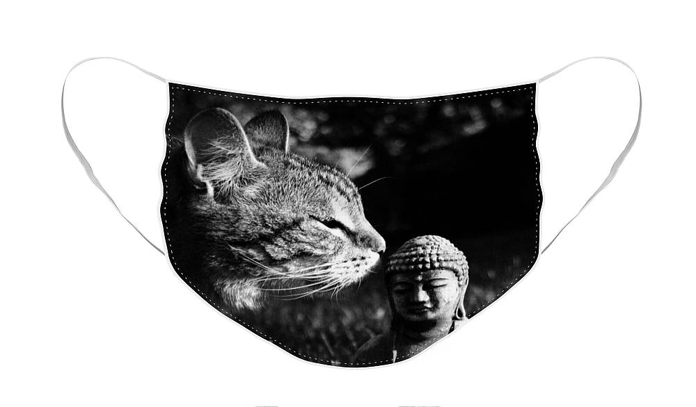 Cat Face Mask featuring the photograph Zen Cat Black and White- Photography by Linda Woods by Linda Woods