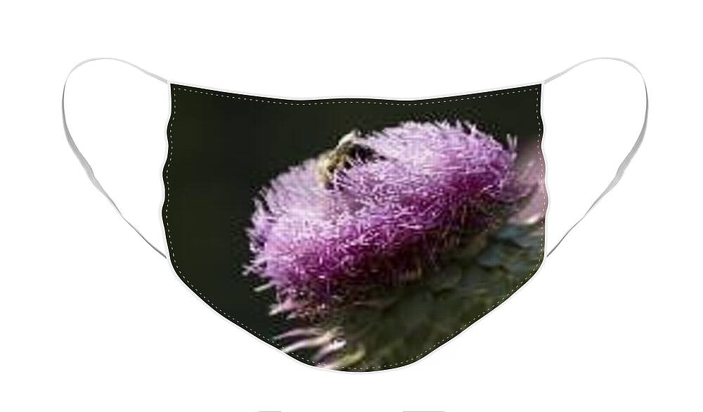Bee Face Mask featuring the photograph Bee on Thistle by Nancy Ayanna Wyatt