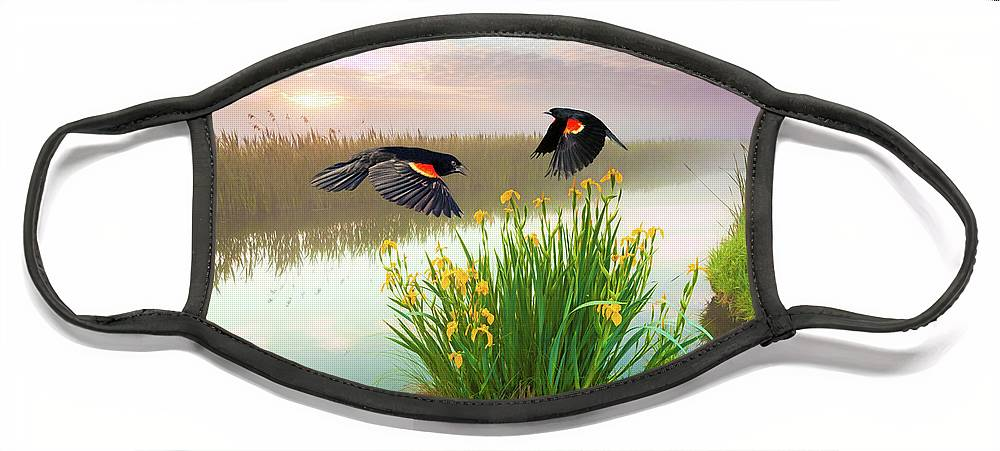 Red Winged Blackbird Face Masks