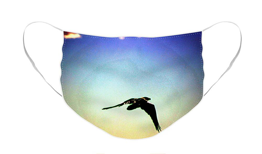Sunburst Face Mask featuring the photograph Raven Flying on Southwest Sunset by Colleen Cornelius