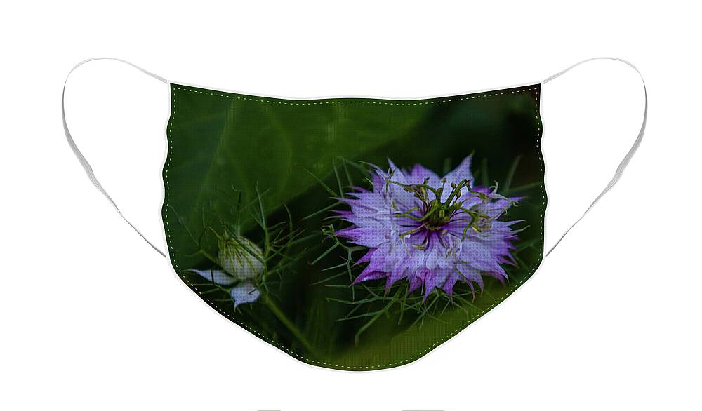 Wildflower Face Mask featuring the photograph Wildflower by John Heywood