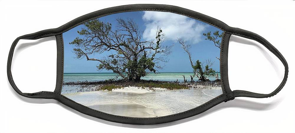Key West Florida Waters Face Mask featuring the photograph Key West Waters by Ashley Turner
