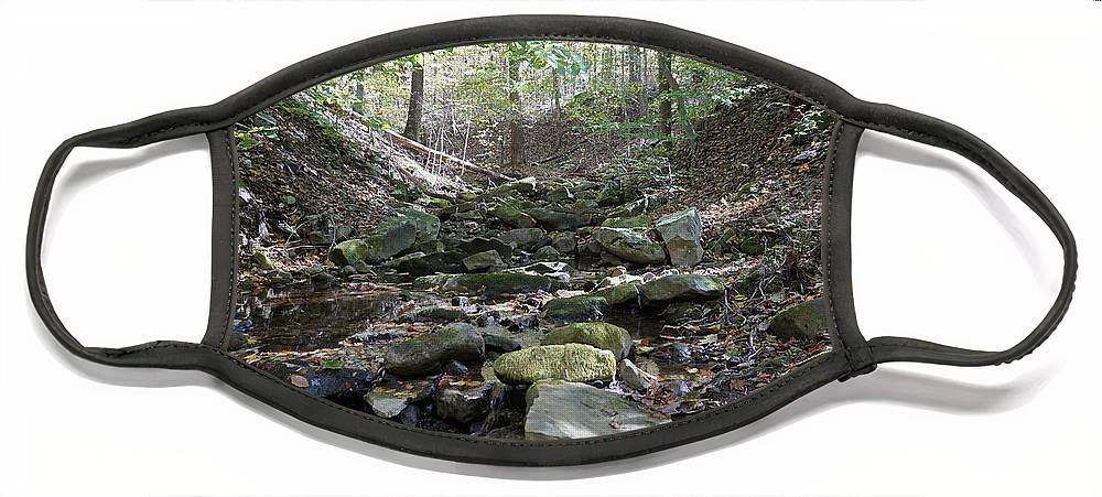 Fall Foliage Face Mask featuring the photograph Bark Rocks 6 by Chris Naggy